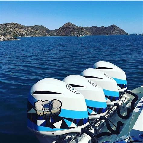 Custom painted outboard motors | Outboard motors, Outboard